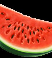 Imagem de Frutas - Melancia 6 PNG
