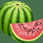 Imagem de Frutas – Melancia 8 PNG