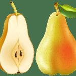 Imagem de Frutas – Pera 3 PNG
