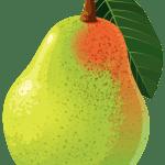Imagem de Frutas – Pera 5 PNG