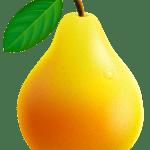 Imagem de Frutas – Pera PNG