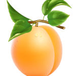 Imagem de Frutas – Pêssego 5 PNG