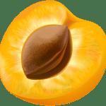 Imagem de Frutas – Pessego 6 PNG