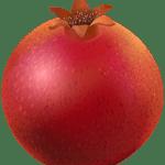 Imagem de Frutas – Romã 3 PNG