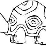 Desenhos Infantis para colorir de Tartarugas