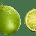 Imagem de Frutas – Limão 5 PNG