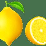 Imagem de Frutas – Limão Siciliano 3 PNG