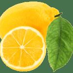 Imagem de Frutas – Limão Siciliano 4 PNG