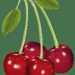 Imagem de Frutas – Cereja 8 PNG