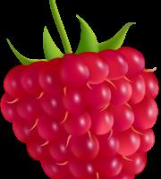 Imagem de Frutas - Framboesa 2