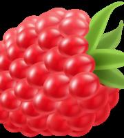 Imagem de Frutas - Framboesa 5
