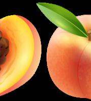 Imagem de Frutas - Pêssego 2