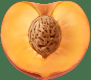 Imagem de Frutas - Pêssego 4