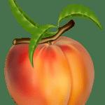 Imagem de Frutas – Pêssego 7 PNG