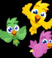Turma Mundo Bita Animais Pássaros