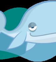 Turma Mundo Bita Animais Baleia