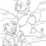 Desenhos do Irmão Urso para Colorir e Imprimir