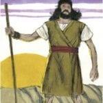 História Bíblica João Batista
