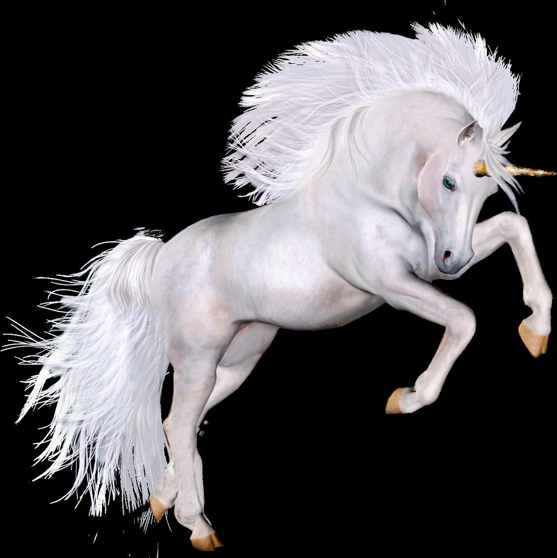 Unicórnio Imagem PNG, unicorn png, png unicornio, Einhorn png
