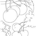 Desenhos de Cereja para Colorir e Imprimir