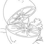 Desenho de Limão para Colorir