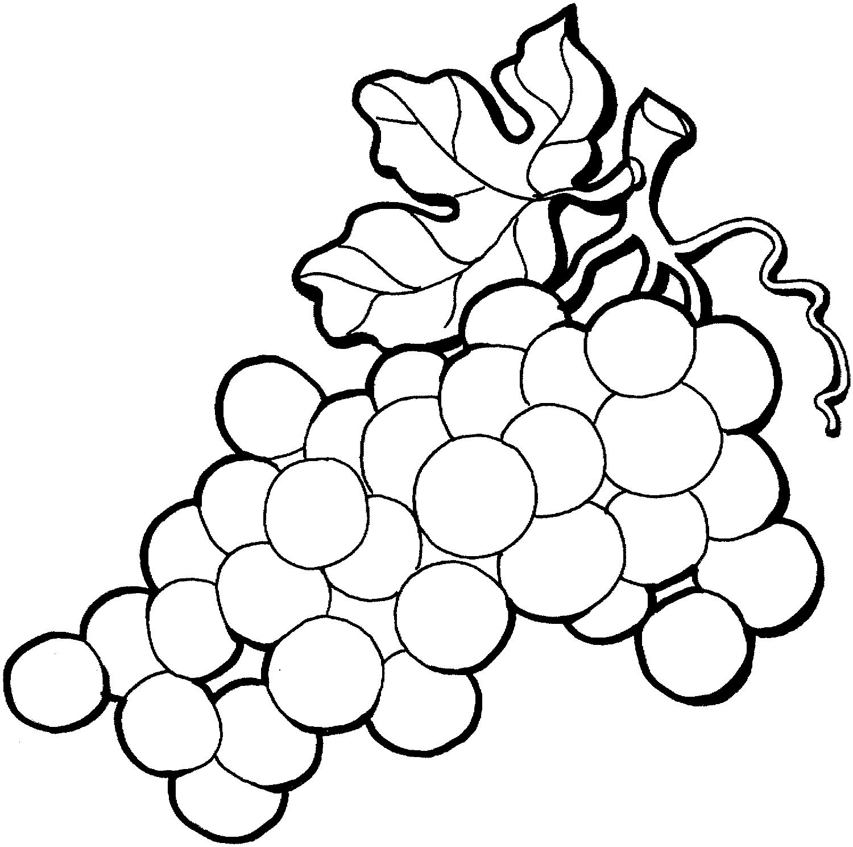 Desenhos De Uva Para Colorir E Imprimir Desenhos Para Pintar