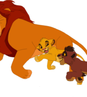 Rei Leão - Ahadi Mufasa PNG