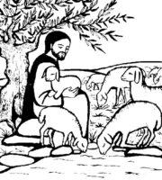 Desenho de Jesus e as ovelhas para colorir