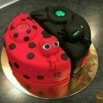 Bolo de Aniversário da Ladybug
