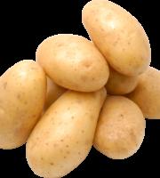 Batata PNG
