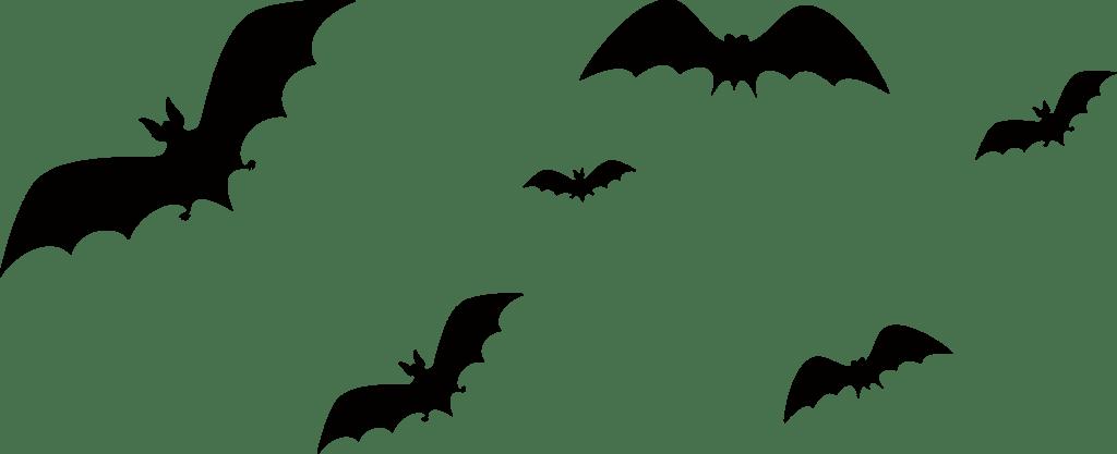 Imagem Morcego Halloween Png 25 Imagens Morcego Halloween Png