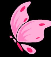 Borboleta rosa png