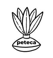 Desenho para Colorir Peteca