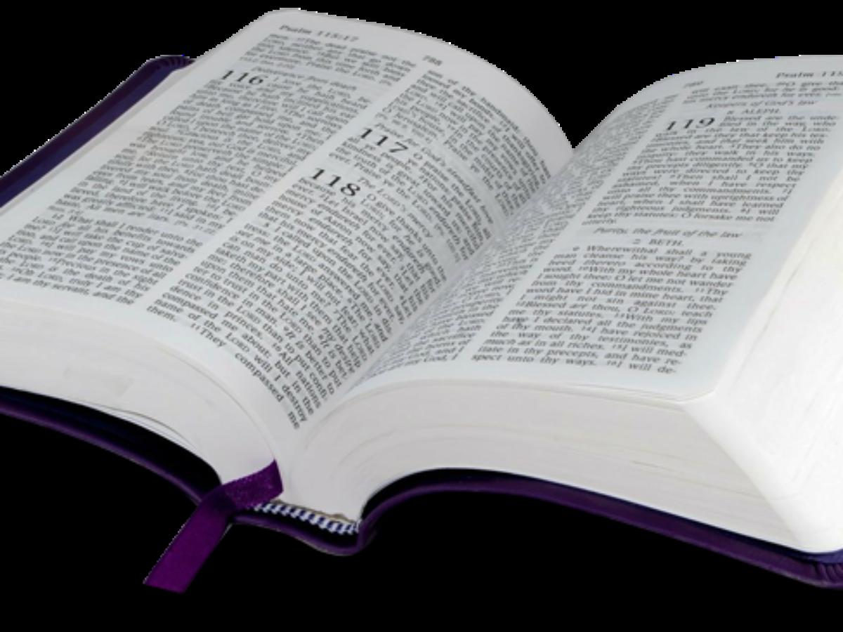 Imagem Biblia Png Arquivos Vetores E Imagens Biblia Png